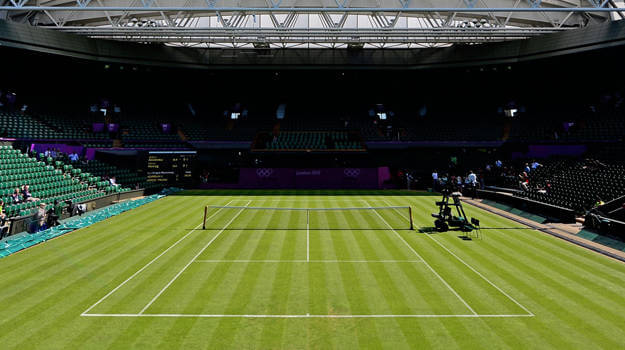 Image result for Tennis grass court